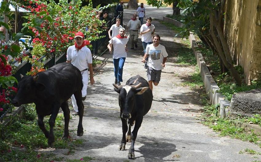 Encierro Venezuela style