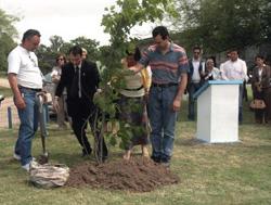 Fabián Zorzabal, Zulema Urcola, Fernando Olazagoitia y Elvio Arce plantando el roble, símbolo vasco, en la Plaza de los Inmigrantes