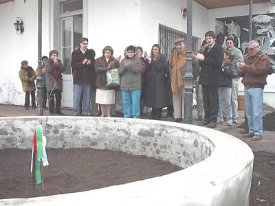 A shoot or sprout of the Tree of Gernika, planted by the Basque Community of Bragado (library photo)