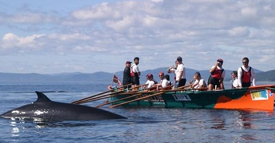 Photo from a previous expedition in the St. Lawrence River by Ibaialde in 2003 (photo Ibaialde)