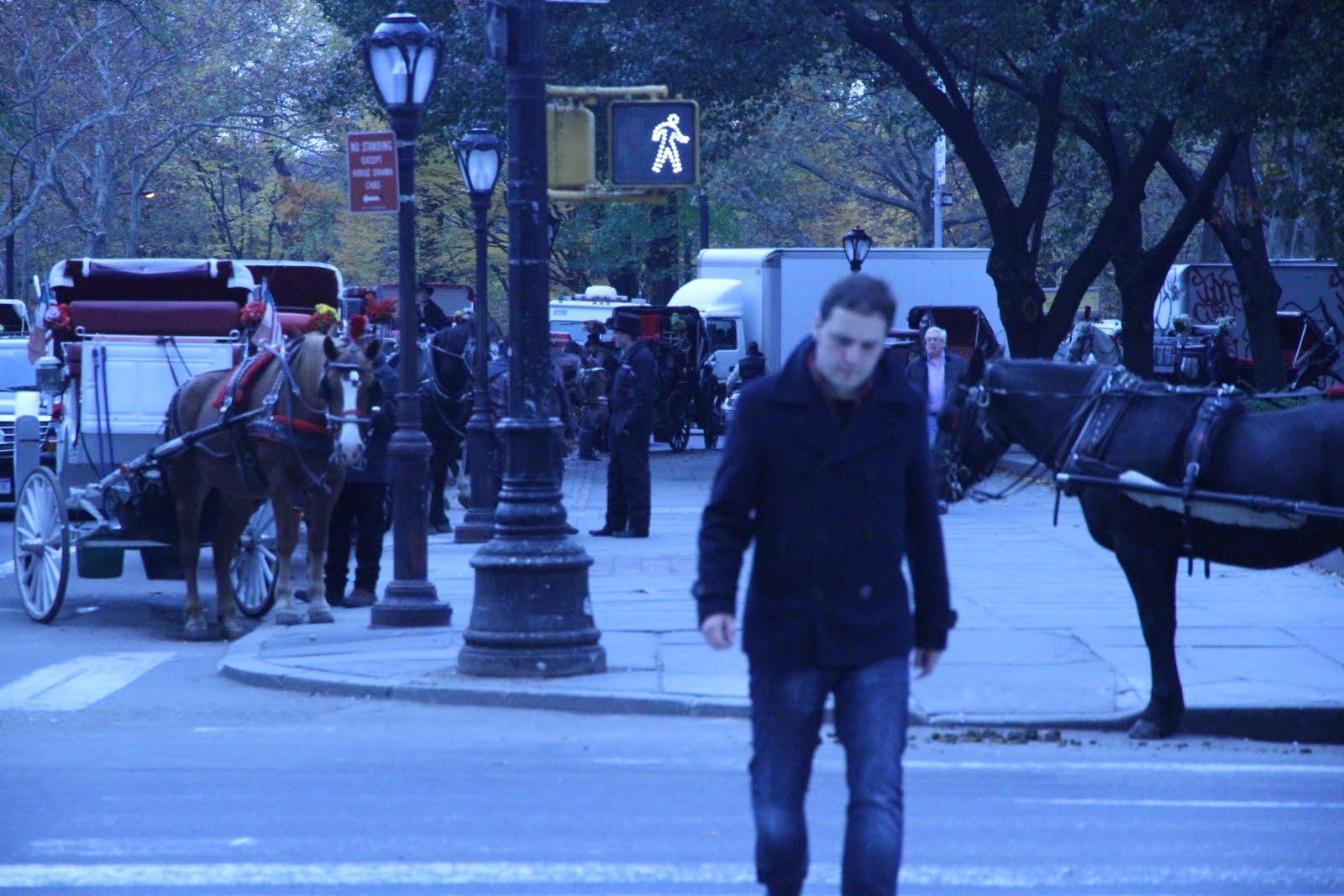 Kirmen Uribe en las calles de Nueva York, Central Park, en una de sus visitas anteriores a la Ciudad de los Rascacielos (foto Cosmopolitananuevayork.blogspot.com.es)