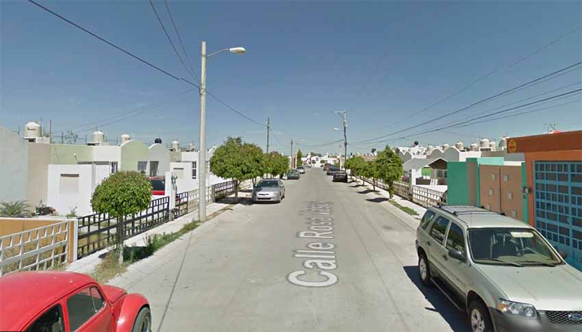 Calle Rosa Vasca San Luis Potosí (Google Maps)