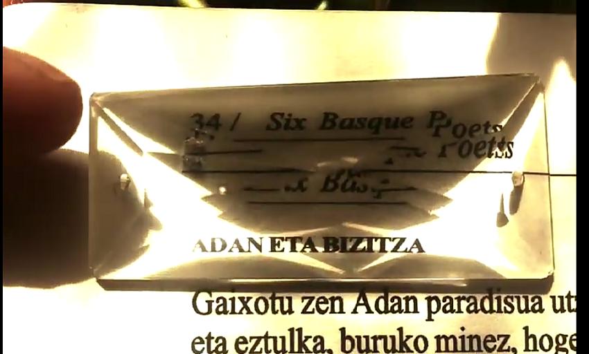 """""""Adam and life"""", Amaia Gabantxok ingelesez bideoratu duen lehenengo poema, Bernardo Atxagarekin hitzekin"""